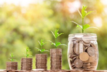 【2020年11月の不労所得まとめ】11月はストックフォトと配当金でいくら稼げたの?